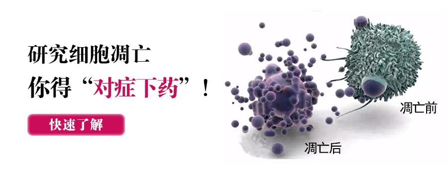 """研究细胞凋亡,你得""""对症下药""""!"""