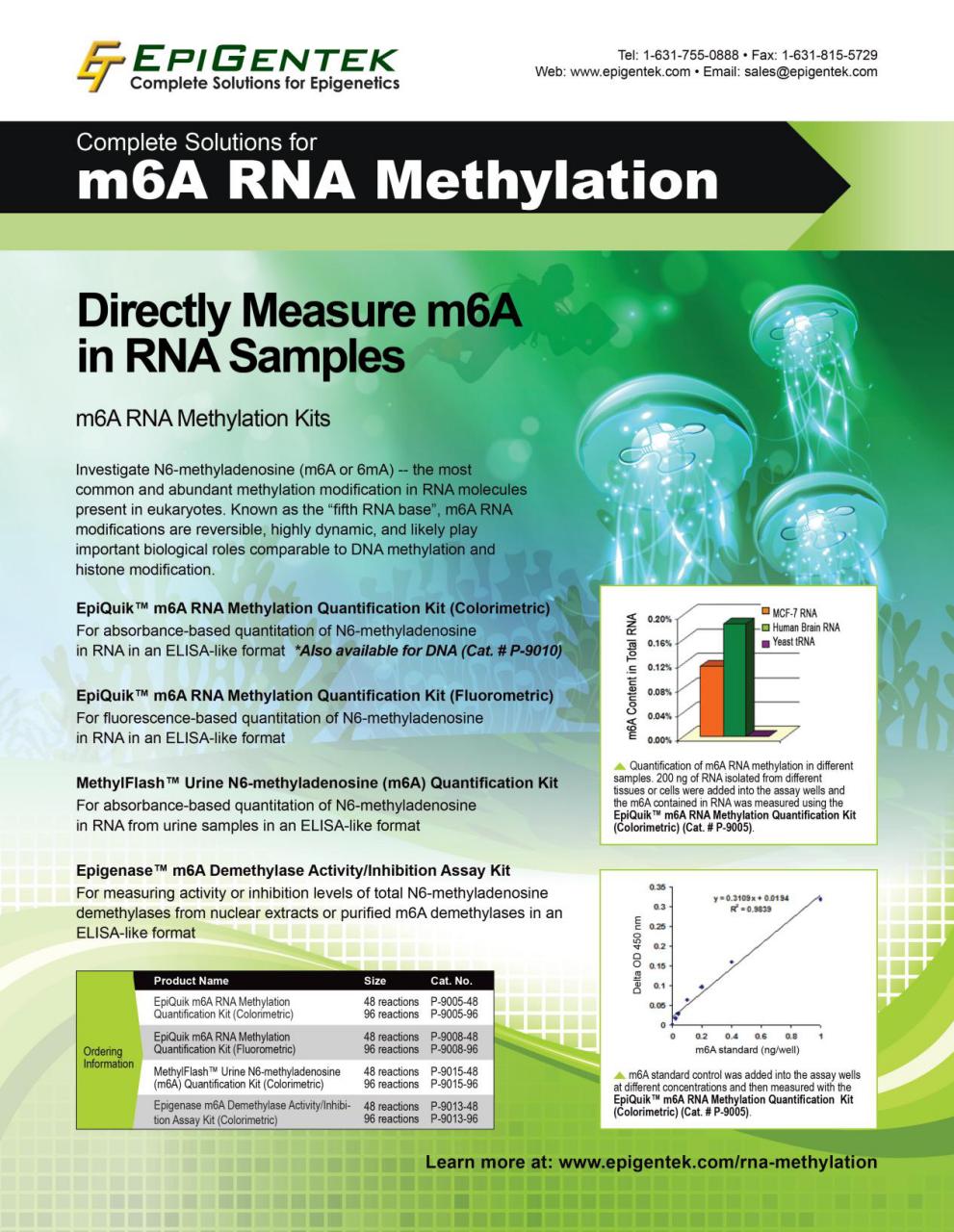 RNA甲基化试剂盒单页1