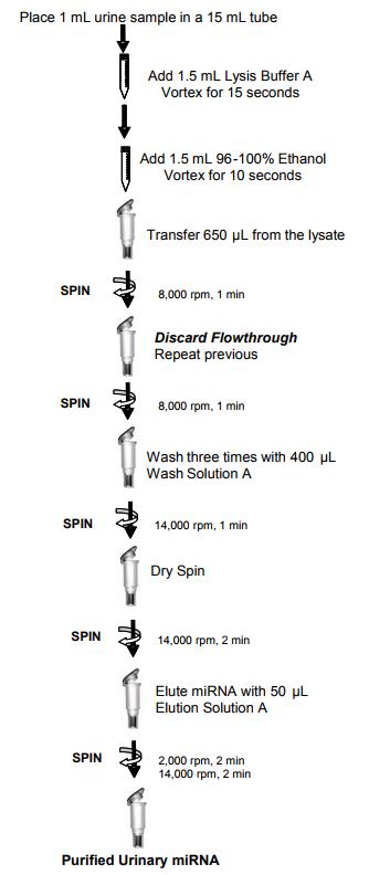 尿液microRNA提纯试剂盒纯化尿液microRNA的流程图
