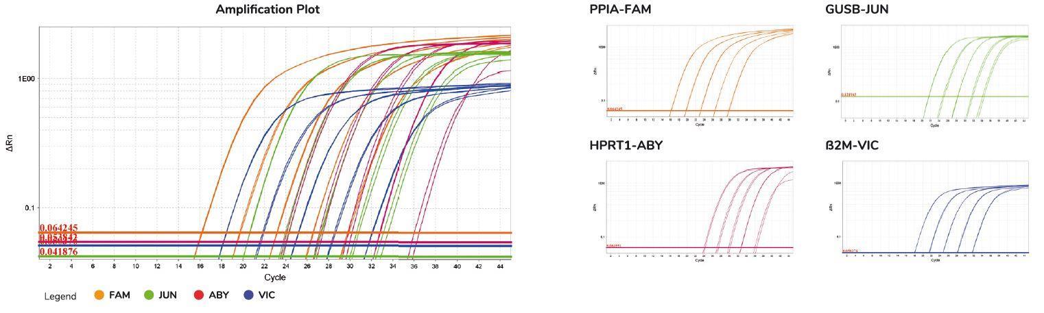 multiplex PCR results