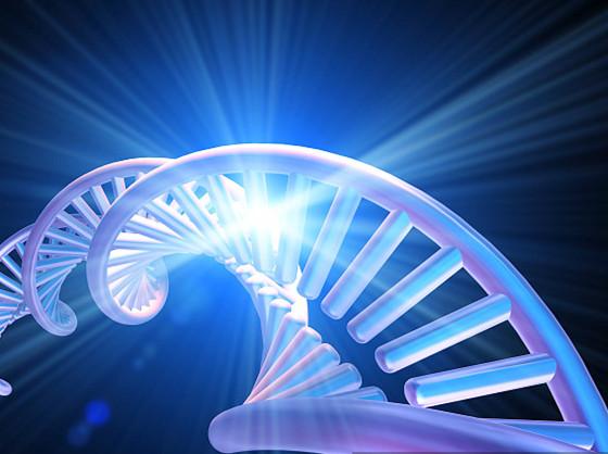 标记核酸技术攻略小常识