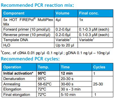 PCR反应体系与PCR程序设置