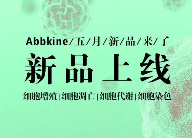 聚焦细胞增殖,细胞凋亡,细胞代谢及细胞染色-Abbkine五月新品来了!