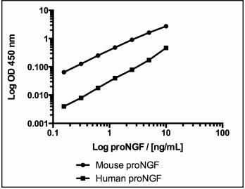BEK-2236检测人的proNGF交叉反应仅为20%