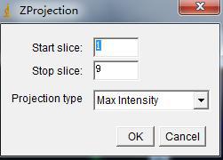 Image,Stacks,Z projection,选择Max Intensity