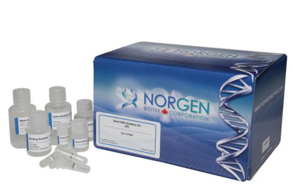 粪便DNA提取试剂盒