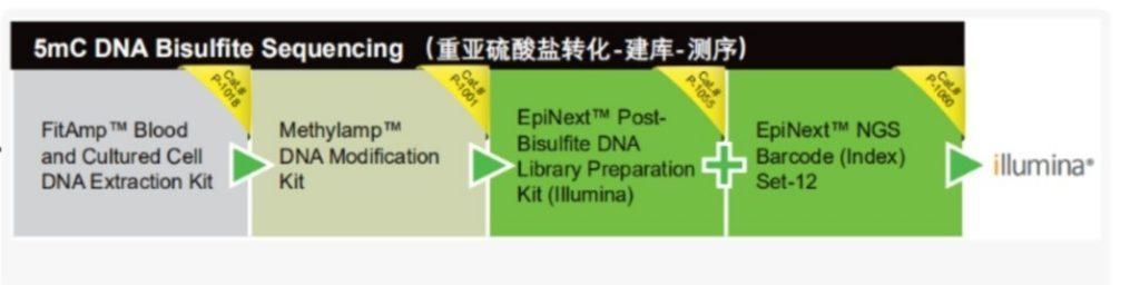 Epigentek可为您提供整体打包方案