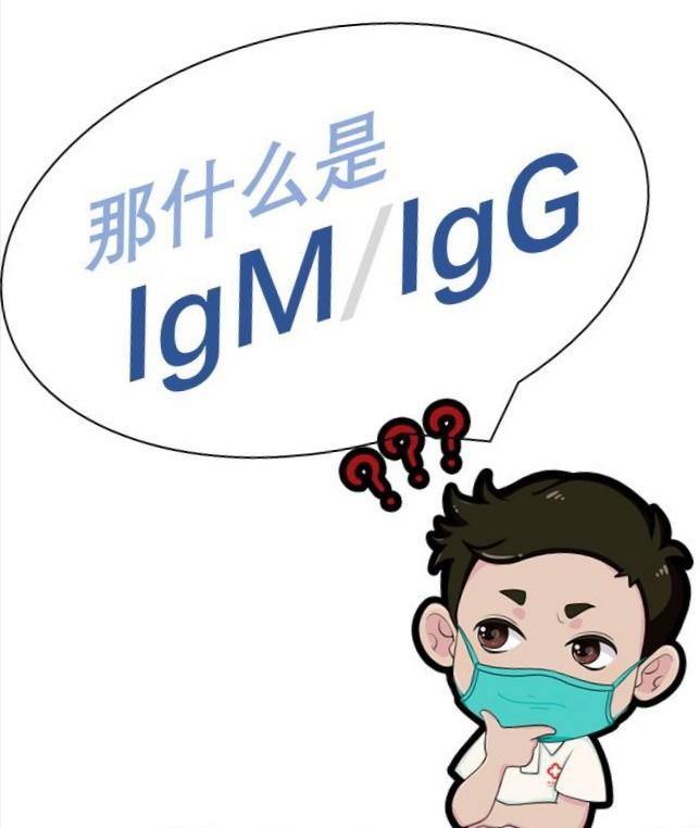 IgM/IgG抗体检测