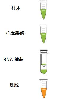 唾液、鼻咽拭子样本推出全新病毒RNA提取试剂盒