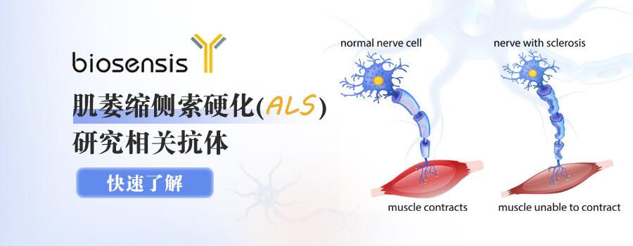 Biosensis肌萎缩侧索硬化(ALS)研究相关抗体