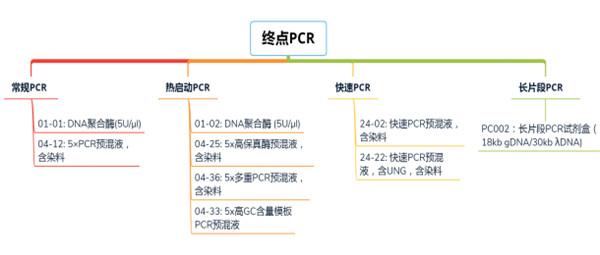 高GC含量PCR