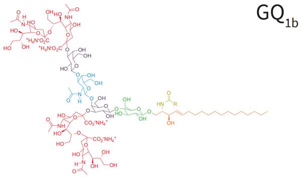 Matreya的神经节苷脂标准品结构式