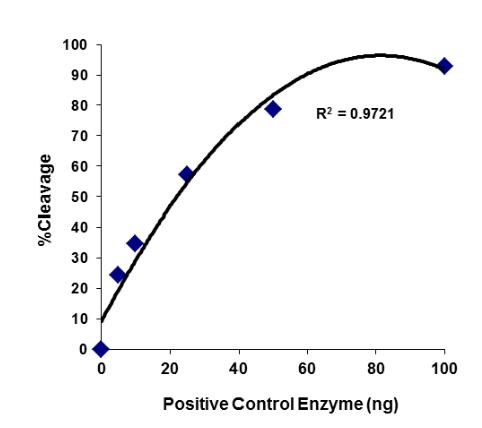 SARS-CoV-2前蛋白转化酶(PC)活性和抑制分析试剂盒