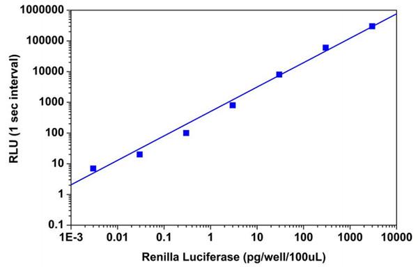 Amplite™海腎熒光素酶報告基因基因測定