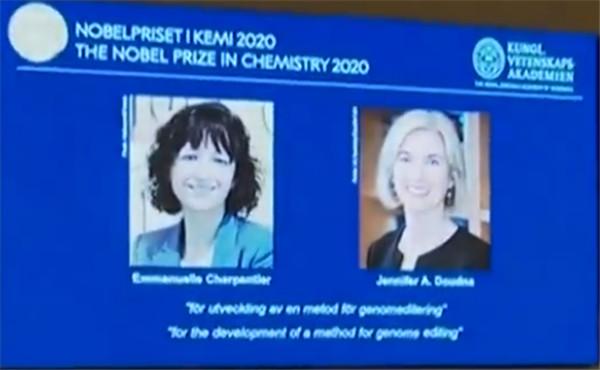 2020年诺贝尔化学奖揭晓