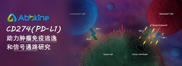 CD274,细胞程序性死亡