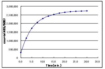 Cdc25C的酶活時間曲線