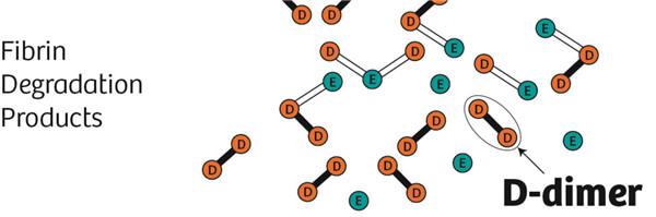 D-二聚体