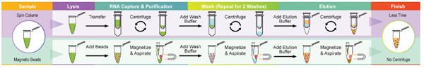 病毒RNA提取试剂盒操作流程