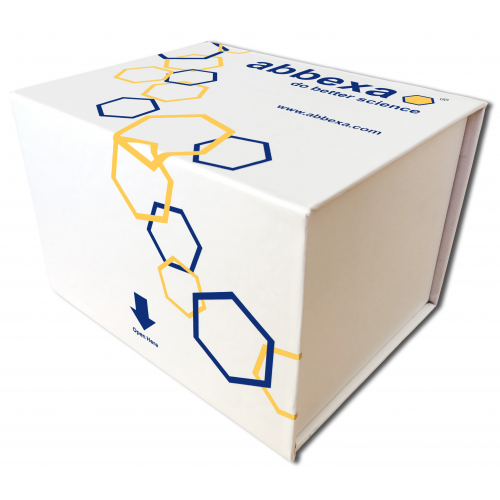 糖化白蛋白ELISA试剂盒