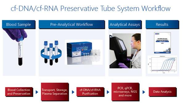 全血样品中游离cf-DNA和cf-RNA保存管的工作流程