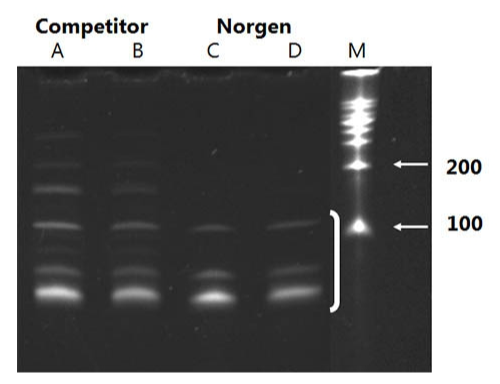 从Hela细胞中提取microRNA