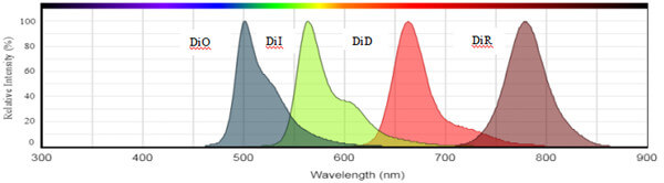 DiO、DiI、DiD、DiR的光谱图