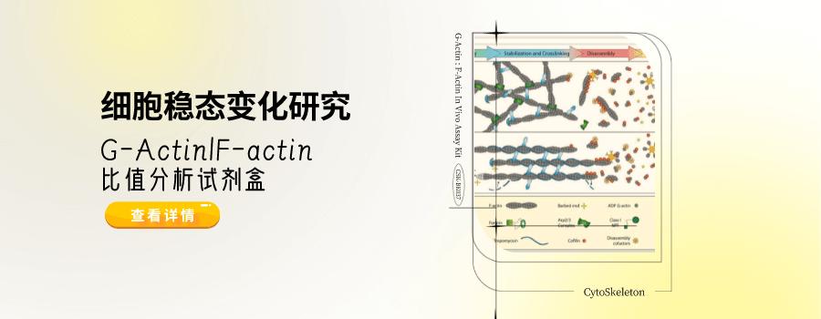 细胞稳态变化研究——G-Actin/F-actin比值分析试剂盒方案来啦
